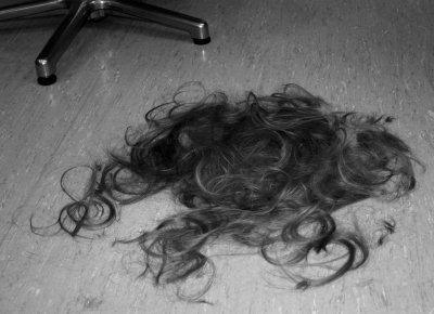 hair-today-gone-tomorrow.jpg