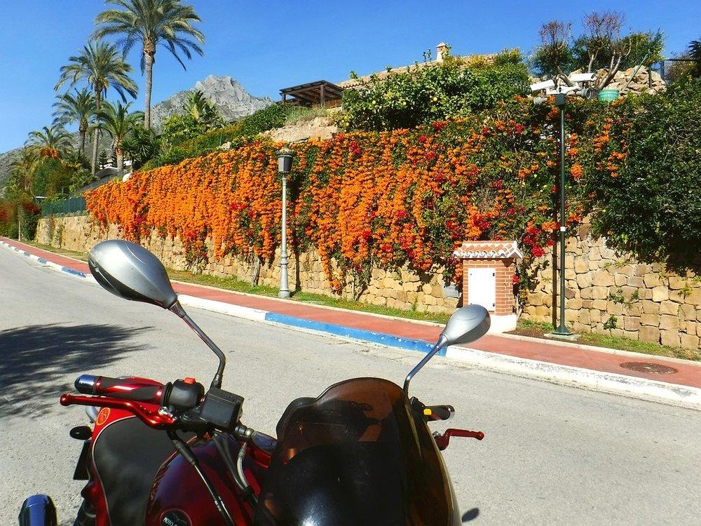 190124-Marbella-Moto-1834+.jpg